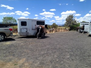 Plentiful  horse trailer accommodations for parking and loading/unloading