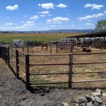 Horse accomodations - round pen and side corrals
