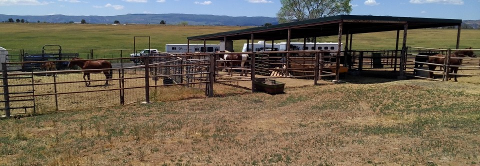 Covered Corrals