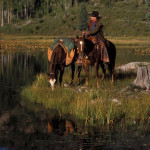 Denney at alpine meadow with horses