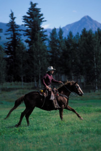 Denney riding through a high mountain pasture
