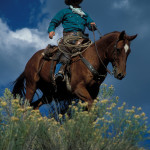 Denney out riding the open range