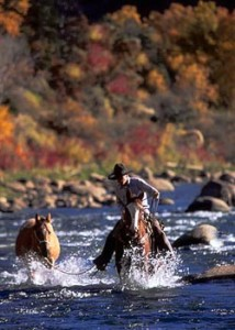 Denney crossing stream with two horses